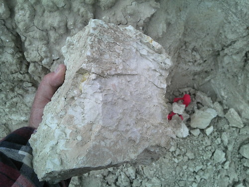 Lithium Enriched Clay at Surface at Clayton Valley Project, Nevada
